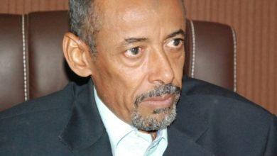 Photo of أحمد يوسف التاي: لن نتركهم أبداً