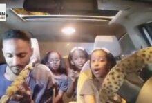 "Photo of بالفيديو.. طفلات يؤدين مع ""ساجوري"" أغنية على أنغام الطمبور يحصدن إعجاب رواد التواصل"