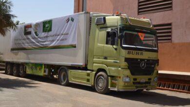 Photo of منحة سعودية دوائية تصل السودان