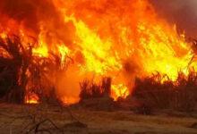 Photo of الانتباهة: حرق كنيسة تتبع للاجئين جنوبيين في جنوب كردفان